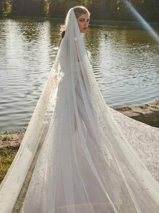 Aretha-with-veil