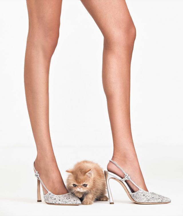 shop-now-shoes